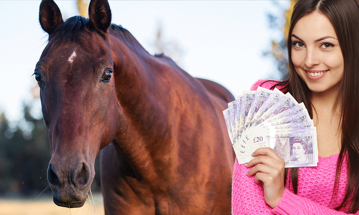 Cost of owning a horse